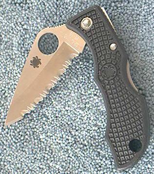 Spyderco SCLBKS Ladybug, black handle, serrated